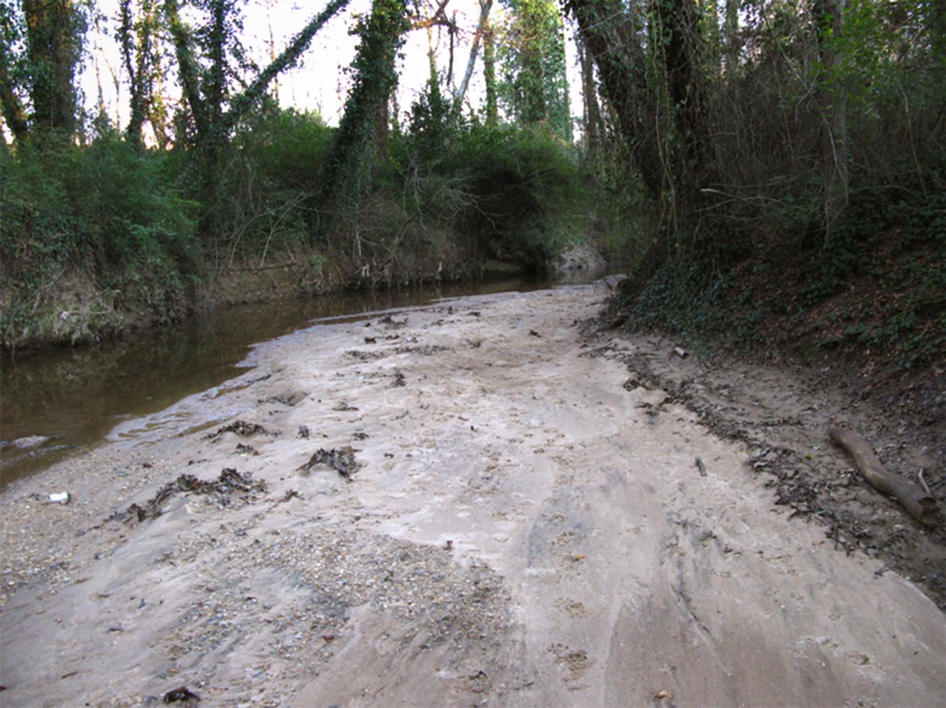 sandbar, randall carlson, geology, hydrology, fluvial depost, creek, channel,