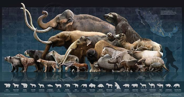 Sacred Geometry International – Pleistocene_Megafauna