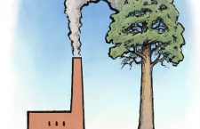 REDEMPTION OF THE BEAST – The Carbon Cycle and the Demonization of CO2 part 4